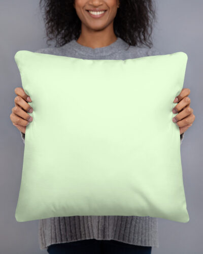 all-over-print-basic-pillow-18x18-600c562a4dfef.jpg